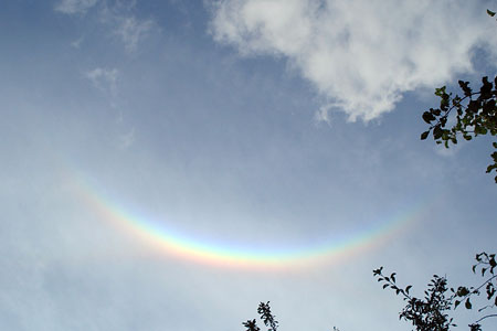 RainbowEffectMNS_450x300.jpg